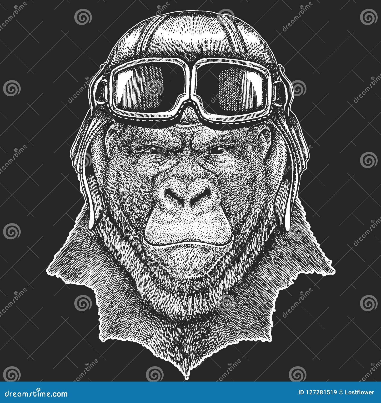 Gorille, chapeau de port d aviateur de singe Imprimez pour des vêtements d enfants, pièce en t, T-shirt Animal sauvage pilote