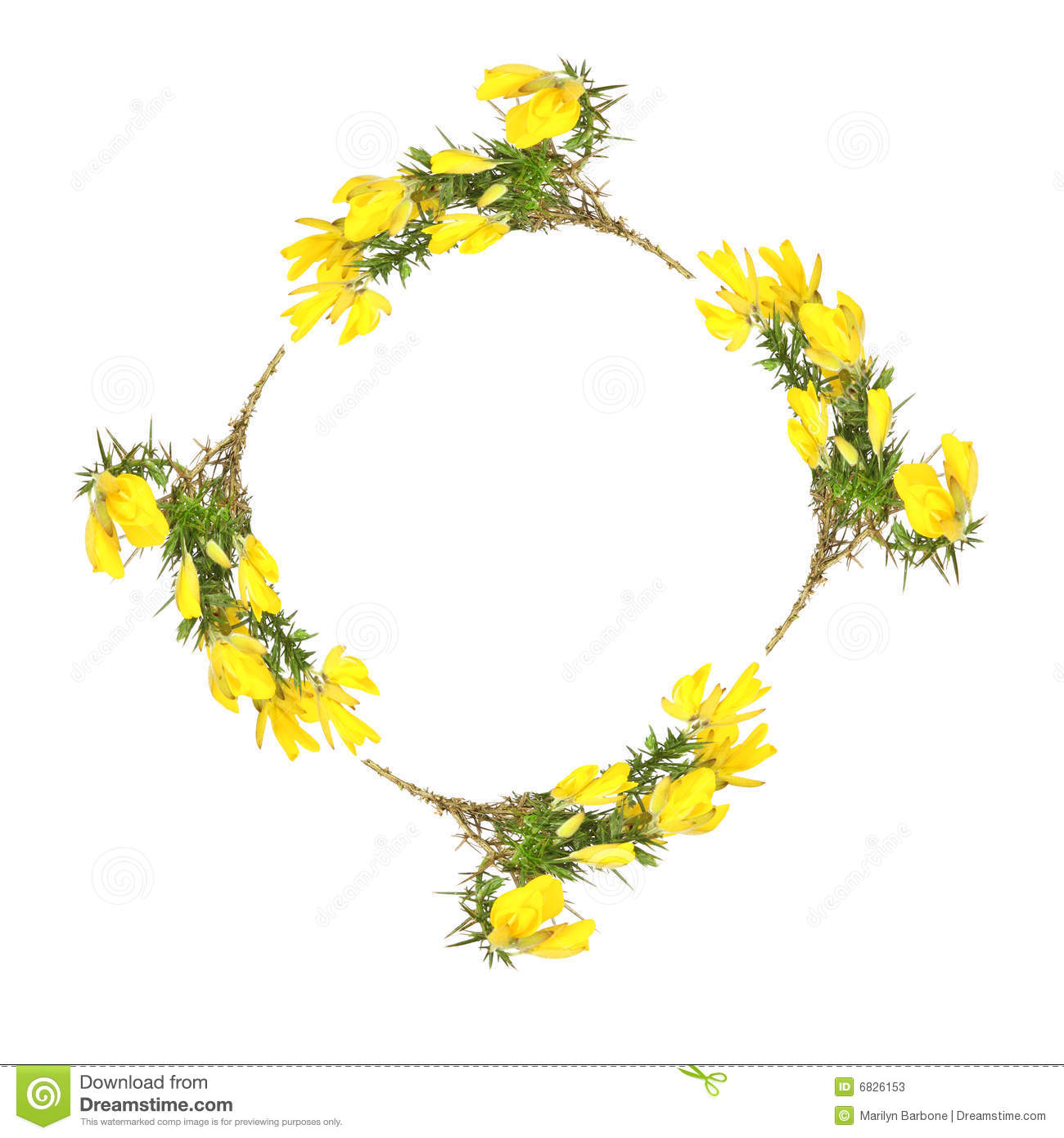 ... forming a circular garland, creating a border, over white background