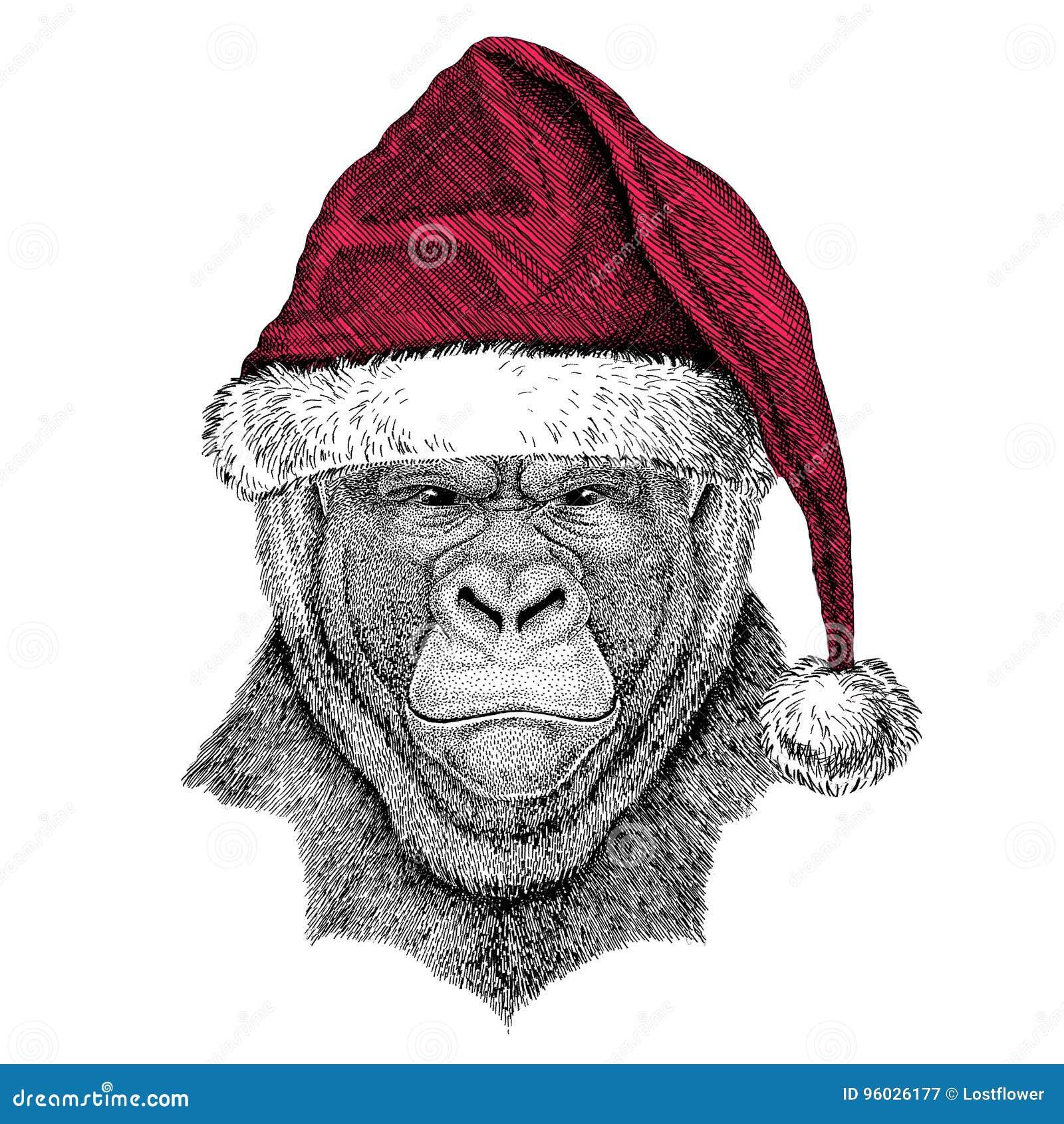 Goryl, małpa, małpuje Frightful zwierzęcego Bożenarodzeniowego ilustracyjnego dzikiego zwierzęcia jest ubranym bożego narodzenia