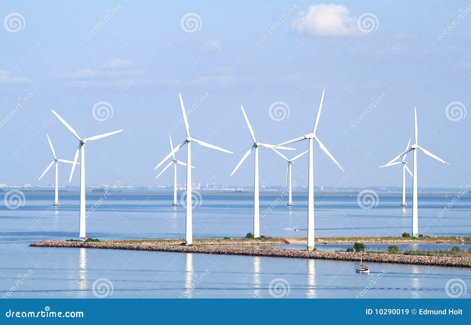 Gospodarstwo rolne nabrzeżny wiatr