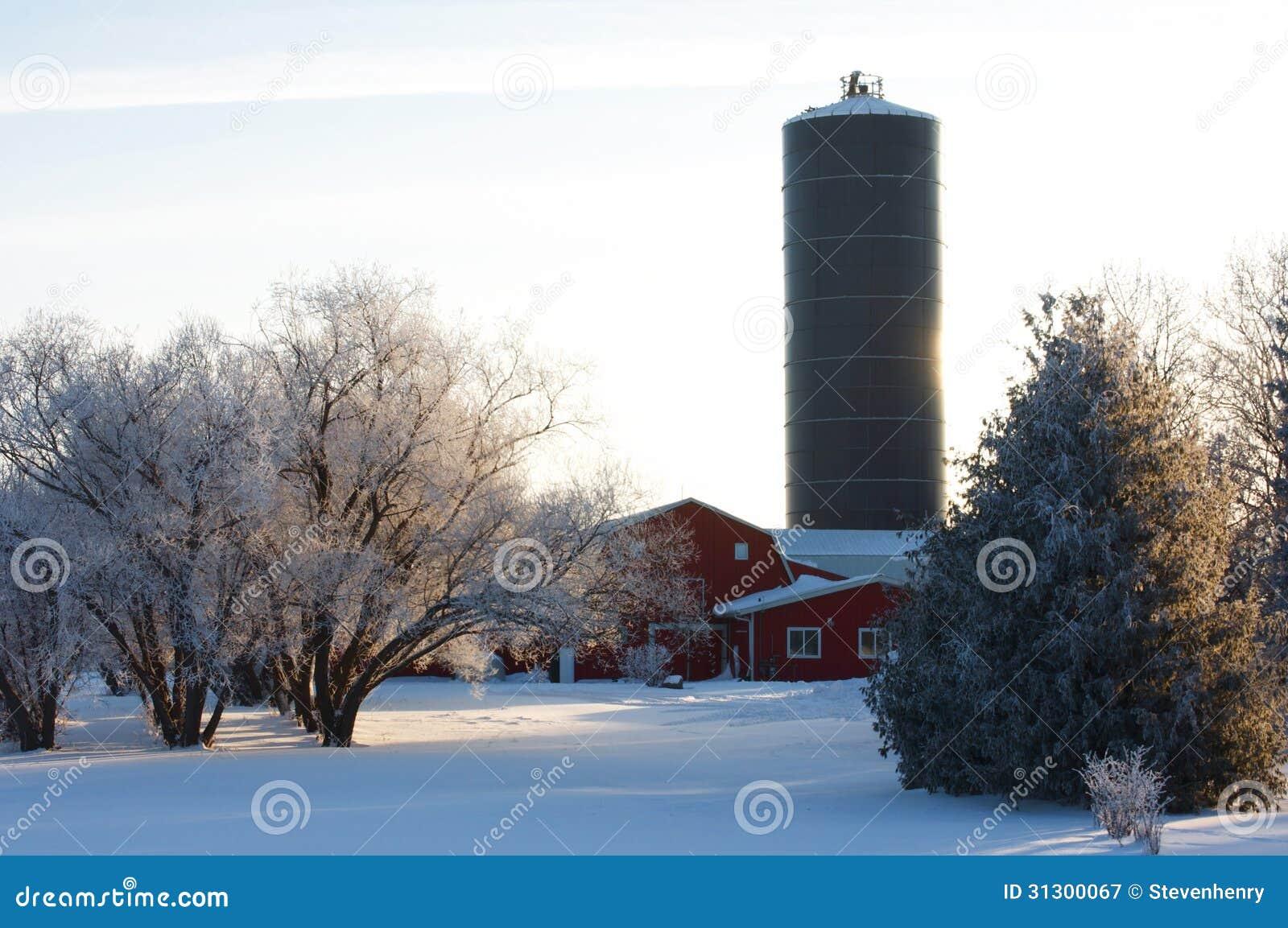 Gospodarstwo rolne w zimie