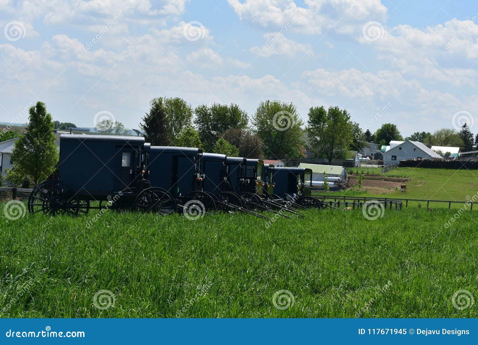 Gospodarstwo rolne z Amish powozikami Parkującymi furami i