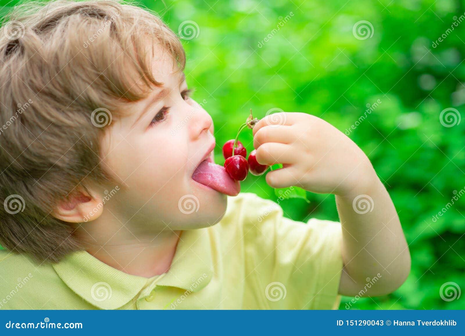 Gosto da cereja O menino come frutos do verão Esta??o da cereja Frutos e bagas para crianças