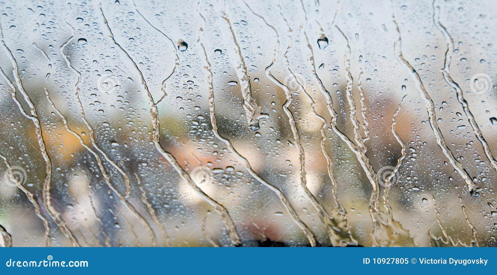 Gotas da chuva em um indicador