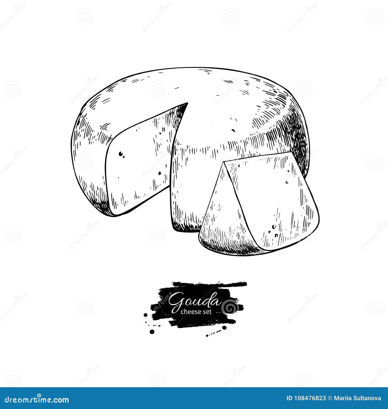 Gouda sera bloku rysunek Wektorowa ręka rysujący karmowy nakreślenie Grawerujący plasterka cięcie