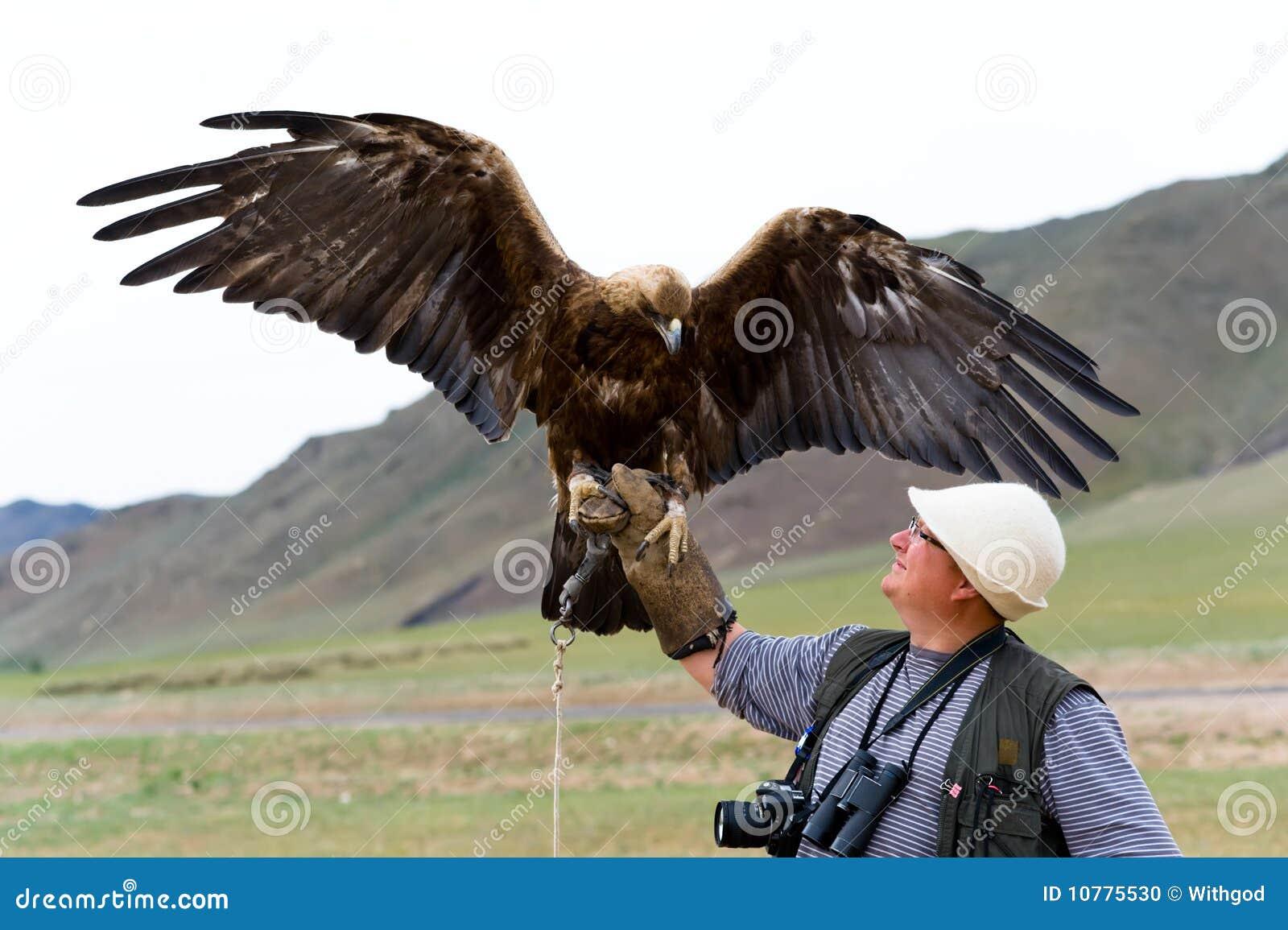 Gouden Adelaar met uitgespreide vleugels