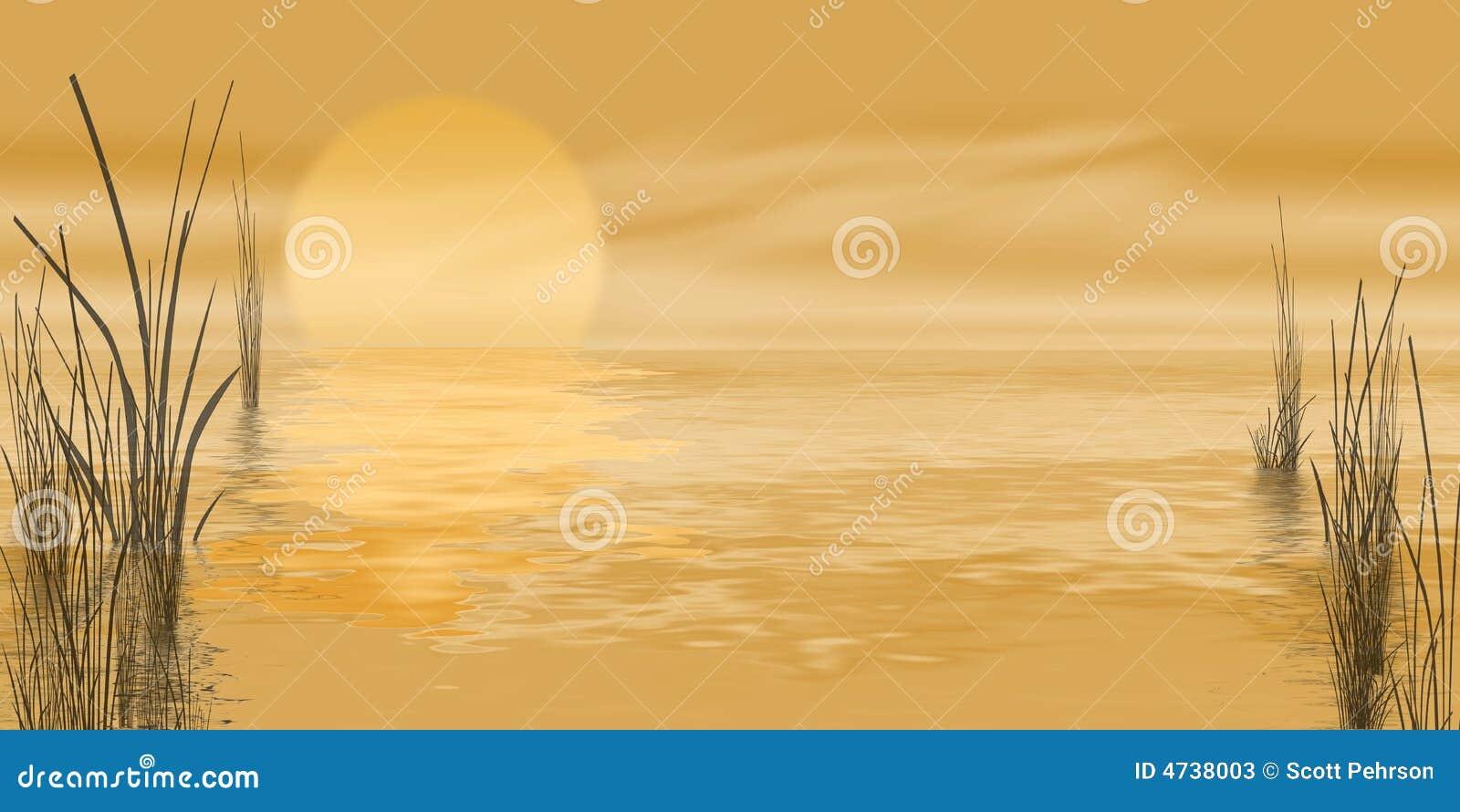 Gouden moeraszonsopgang