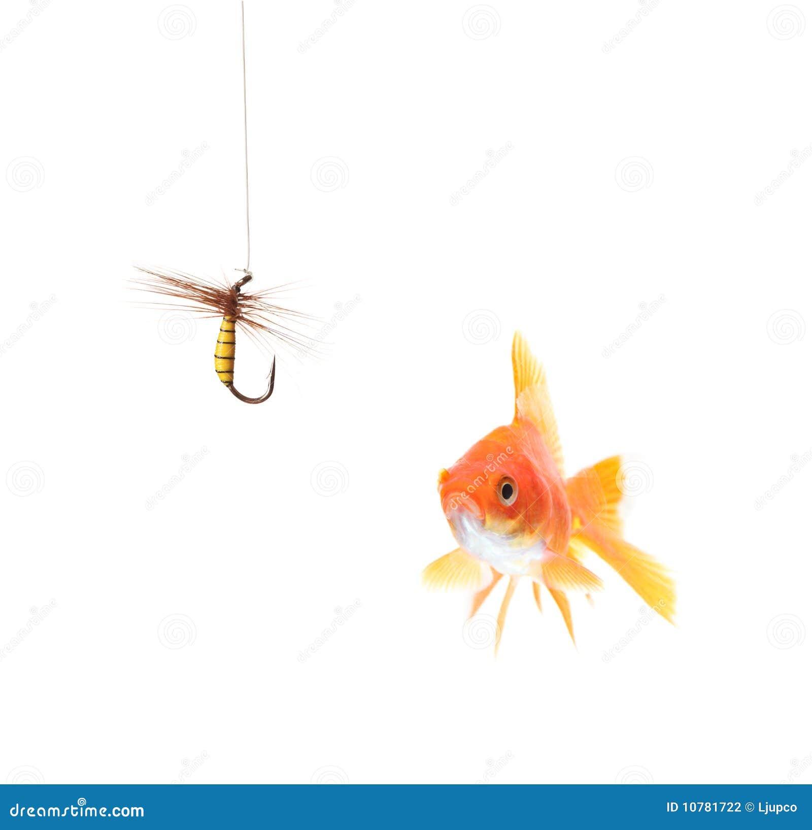 Gouden vissen en een visserijhaak