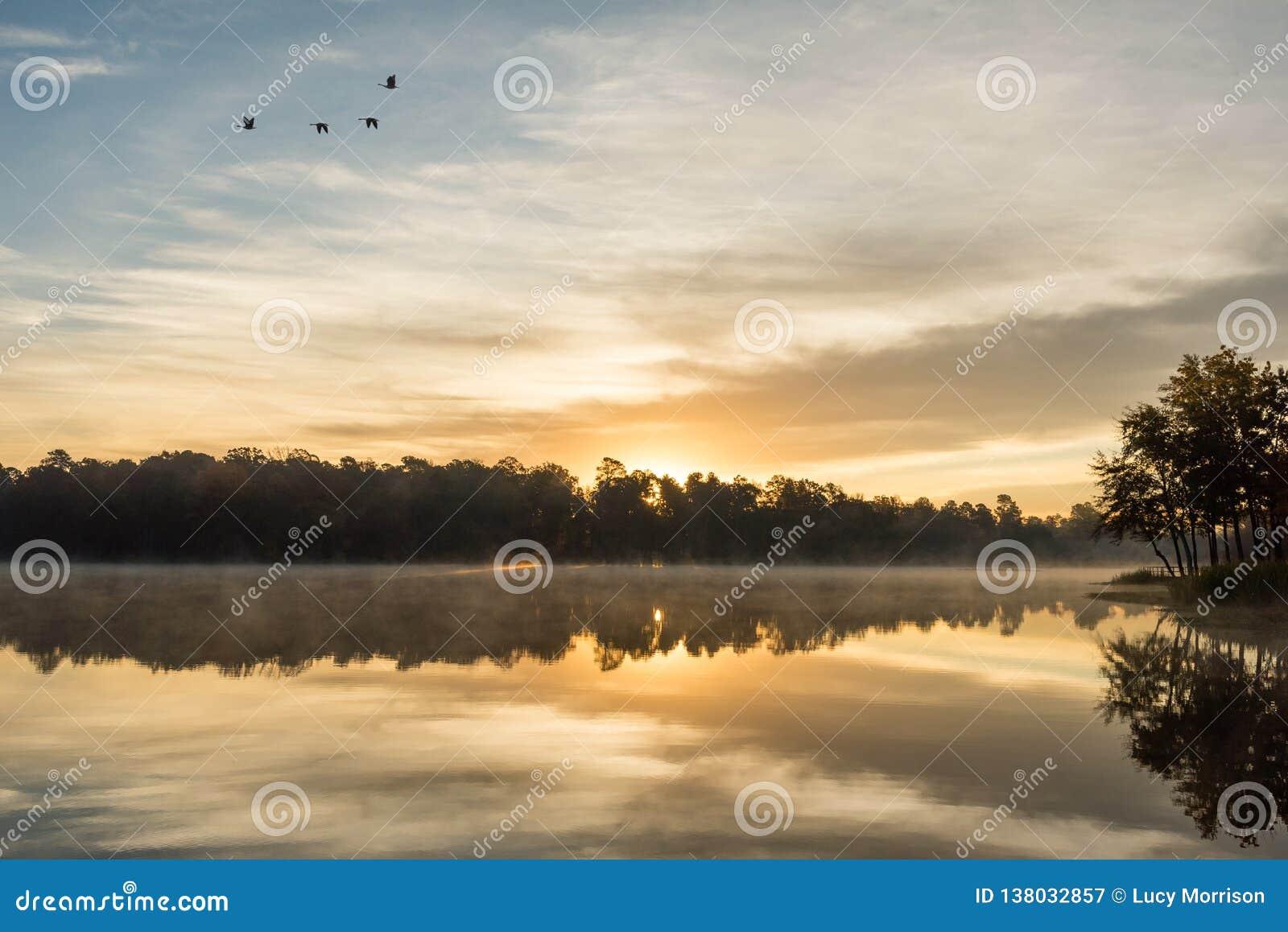 Gouden Zonsopgangbezinning over Misty Lake
