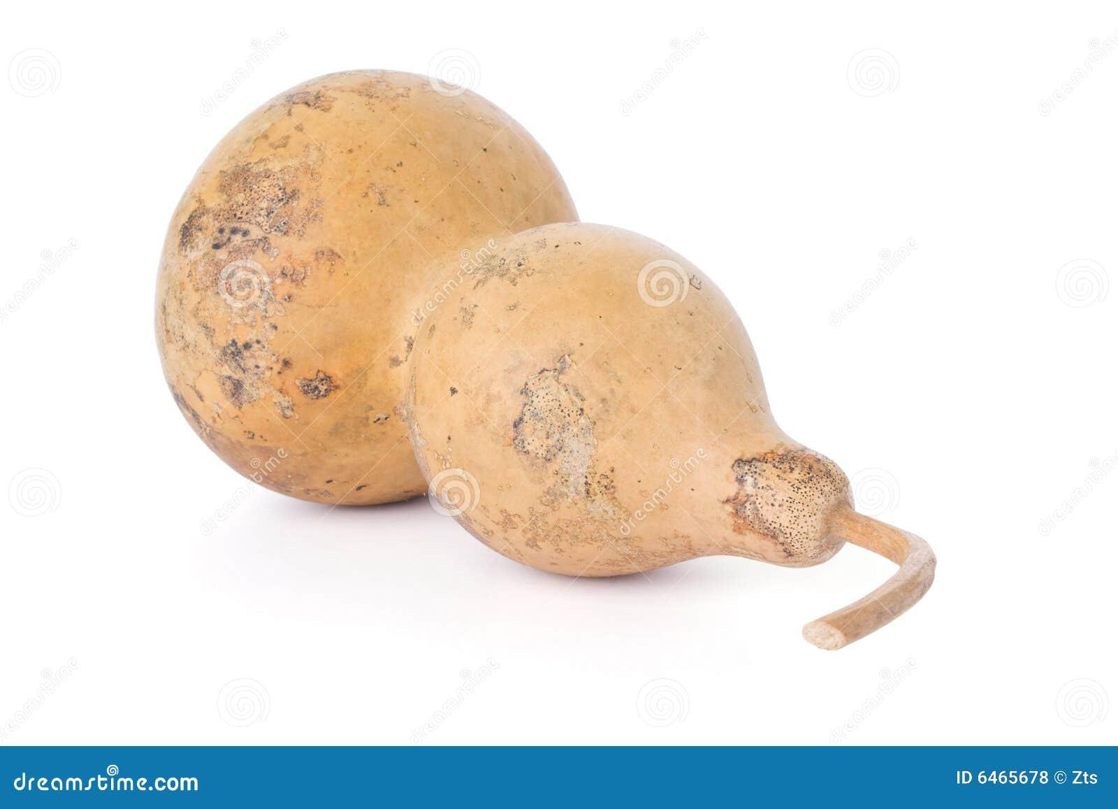 Gourd de frasco isolado no branco