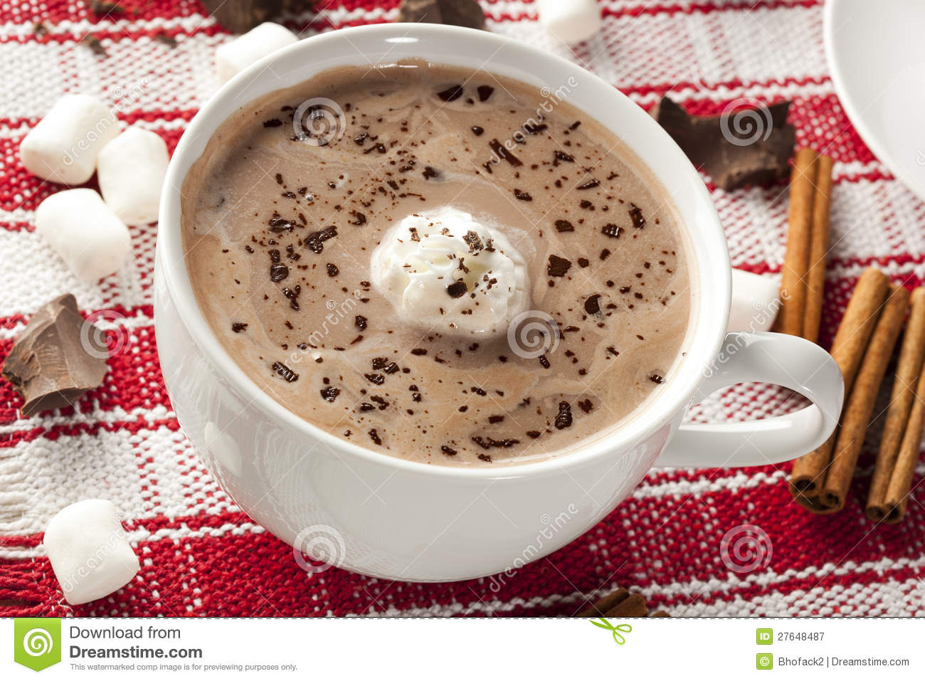 Gourmet Hot Chocolate Royalty Free Stock Photography - Image: 27648487