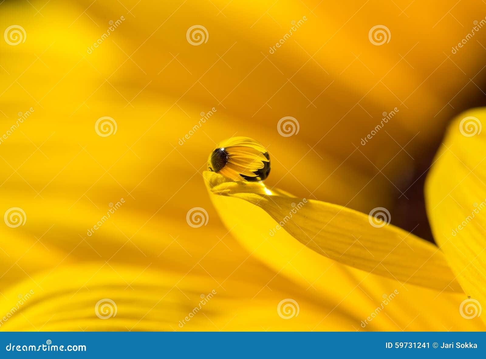 Gouttelette jaune