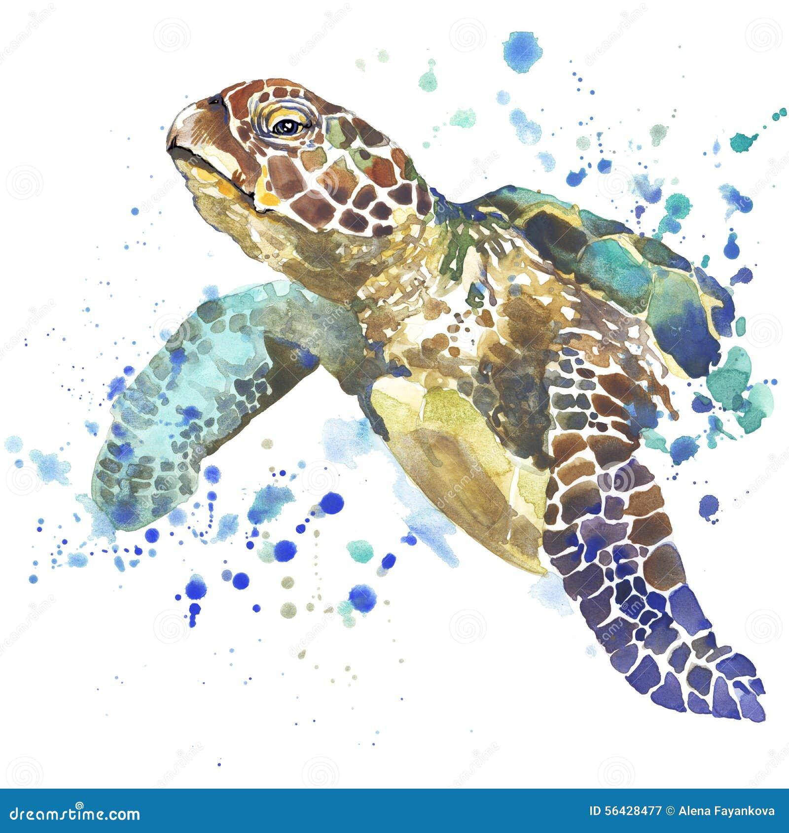 Gráficos do t-shirt da tartaruga de mar a ilustração da tartaruga de mar com aquarela do respingo textured o fundo aquarela incom