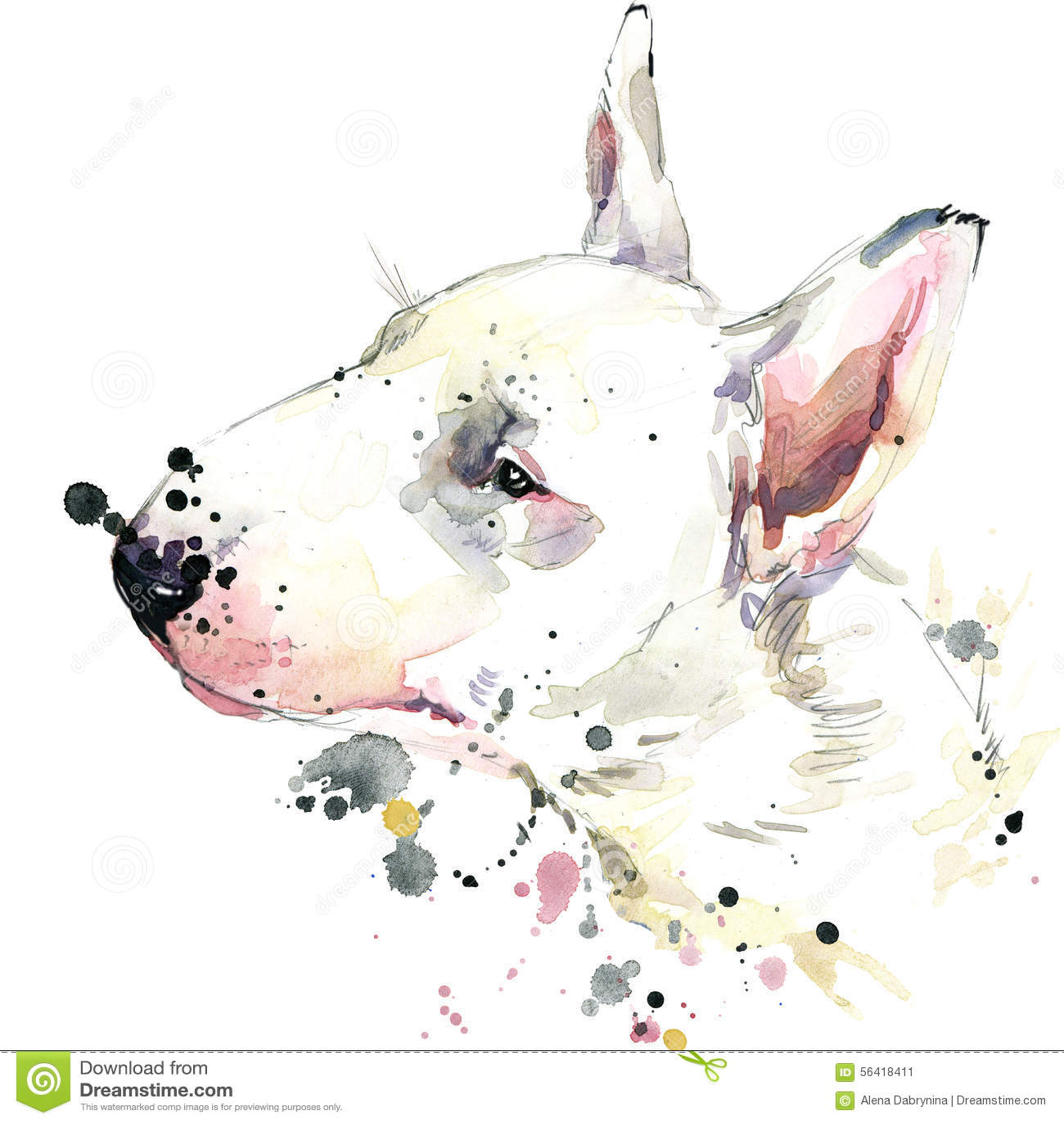 Gráficos do t-shirt do cão de bull terrier Ilustração do cão com fundo textured aquarela do respingo aquarela incomum da ilustraç