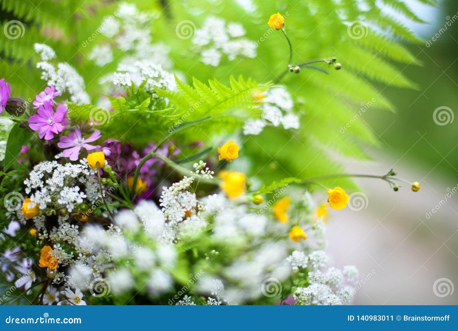 Grüner Feldblumenstrauß von Farnblättern, viele verschiedenen kleinen weißen, gelben, purpurroten Wildflowers verwischte Hintergr