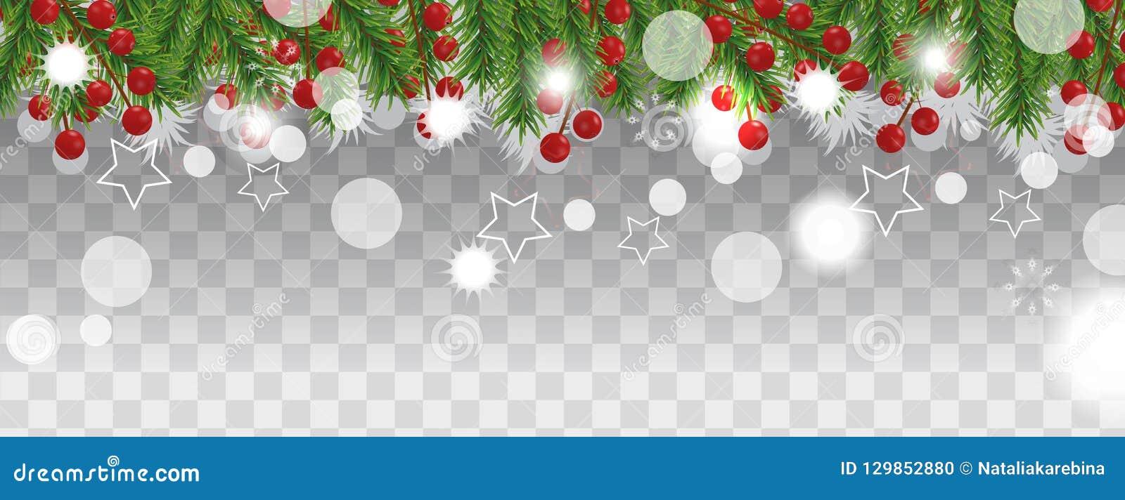 Gräns för jul och för lyckligt nytt år av julgranfilialer med järnekbäret på genomskinlig bakgrund Semestrar garnering Ve