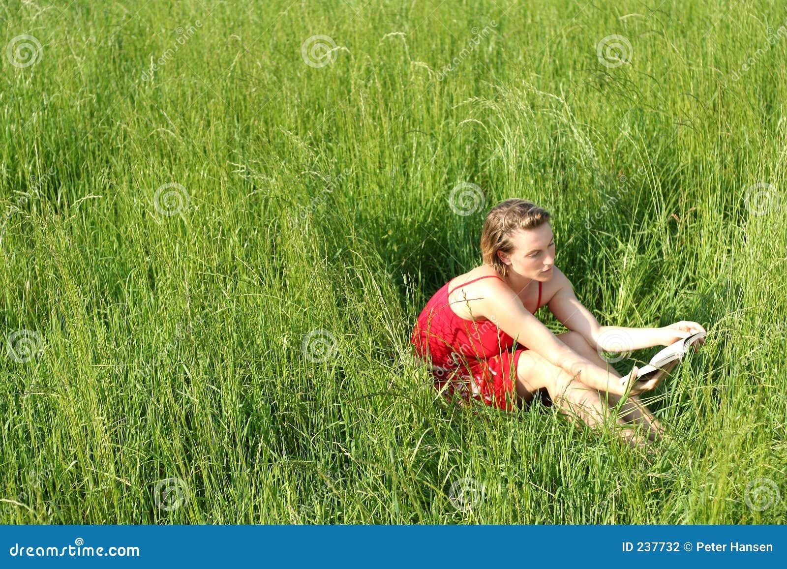Gräs ii som läser