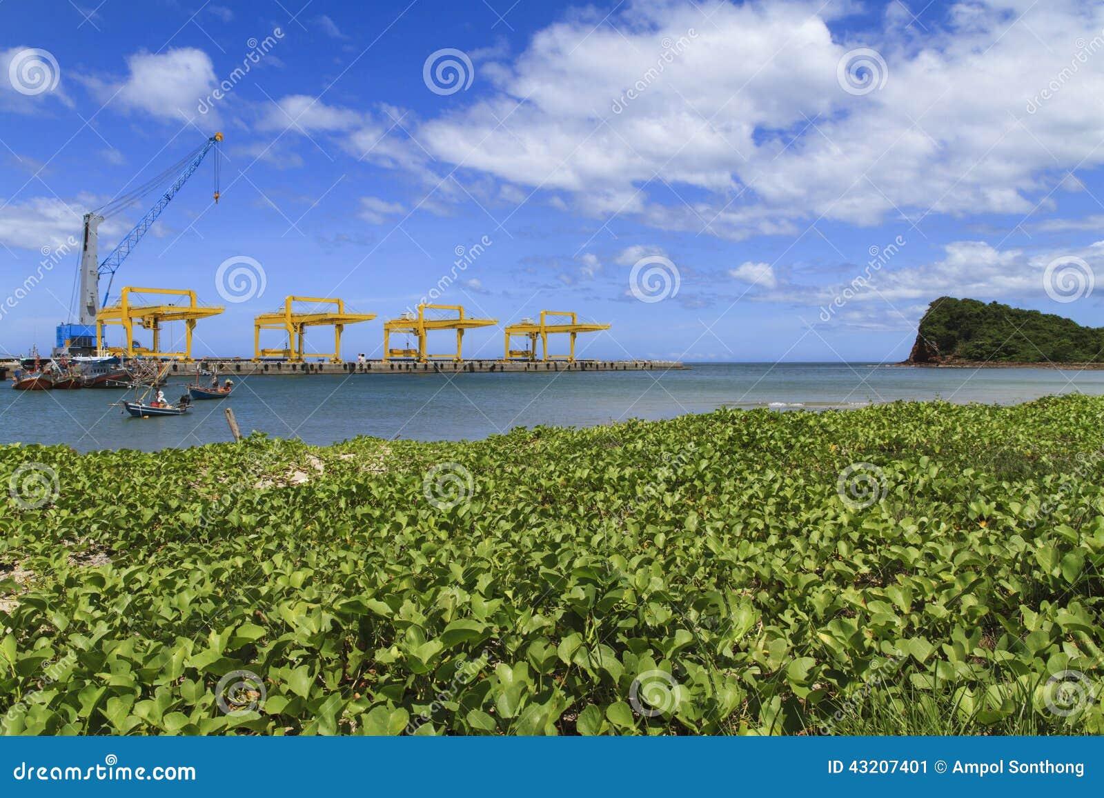 Download Gräs på branschkranar fotografering för bildbyråer. Bild av skeppsvarv - 43207401