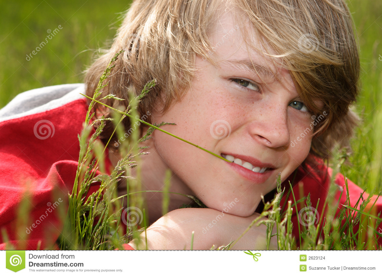 Gräsläggande