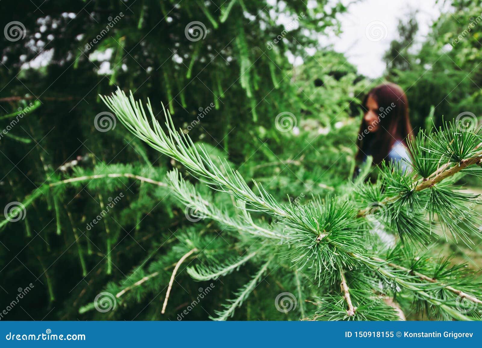 Gräsplan sörjer filialer på bokehbakgrunden av flickan