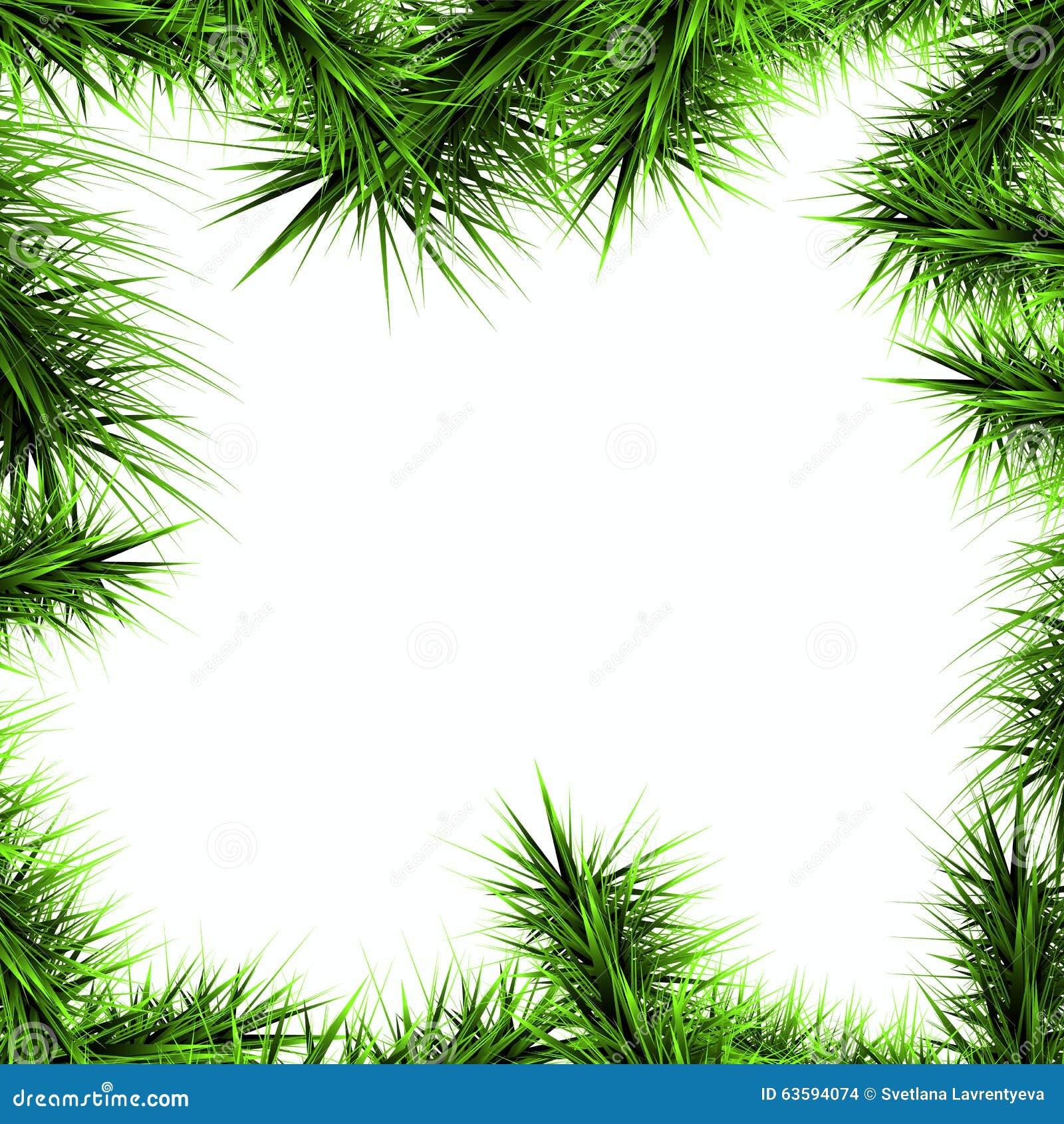 Gräsplanfilialer av en julgran på en vit backgroun