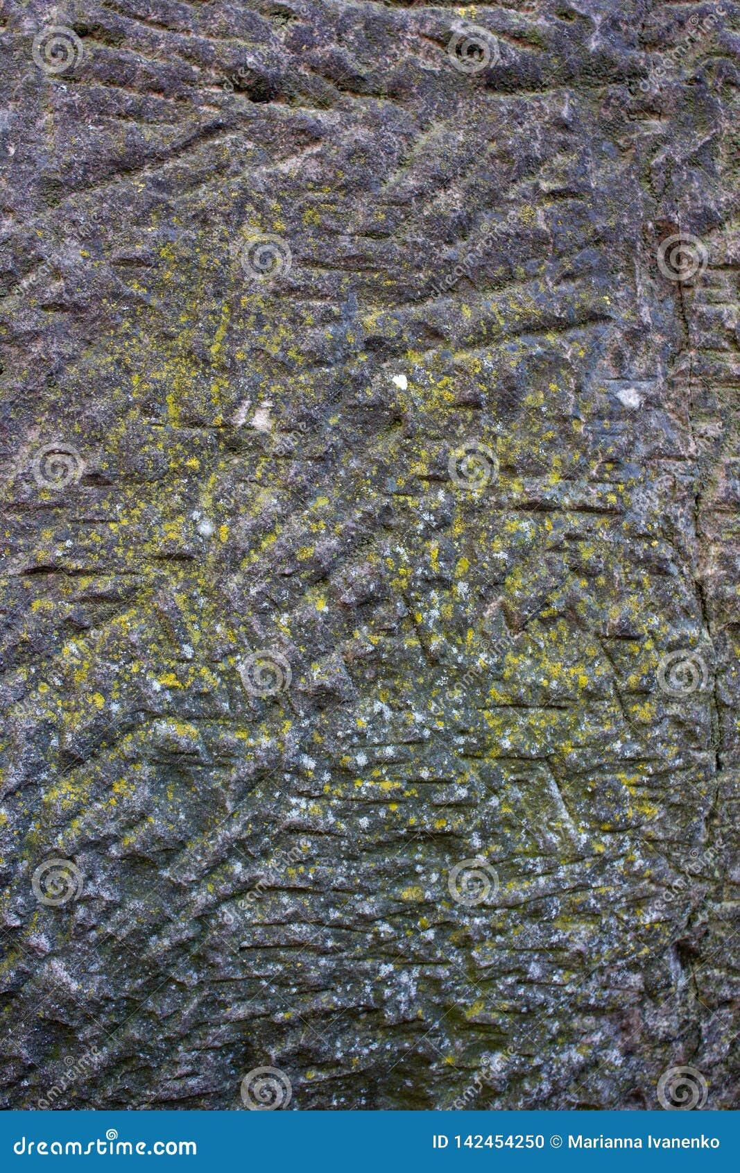 Grå färgstentextur med små skrapor och gul mossa