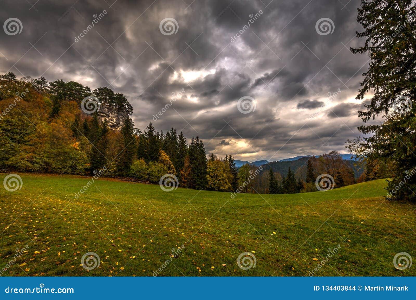 Grön alpin äng med färgrika stupade sidor, höstskogen och dramatisk molnig himmel