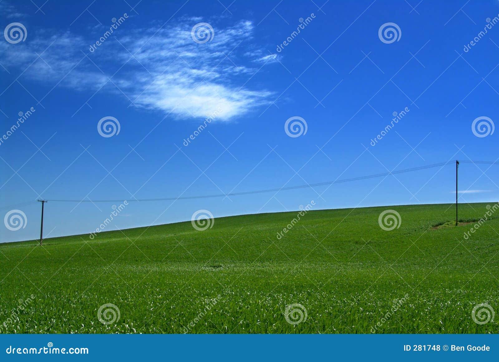Grön kull