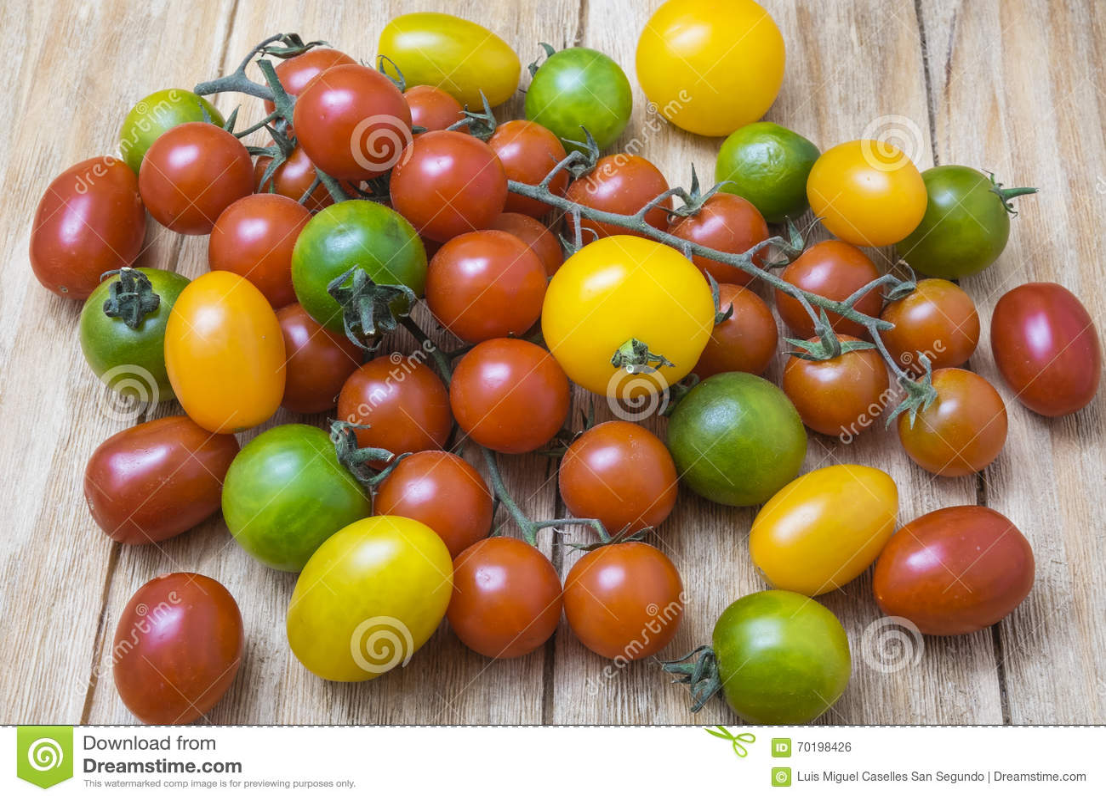 Grön röd tomatyellow