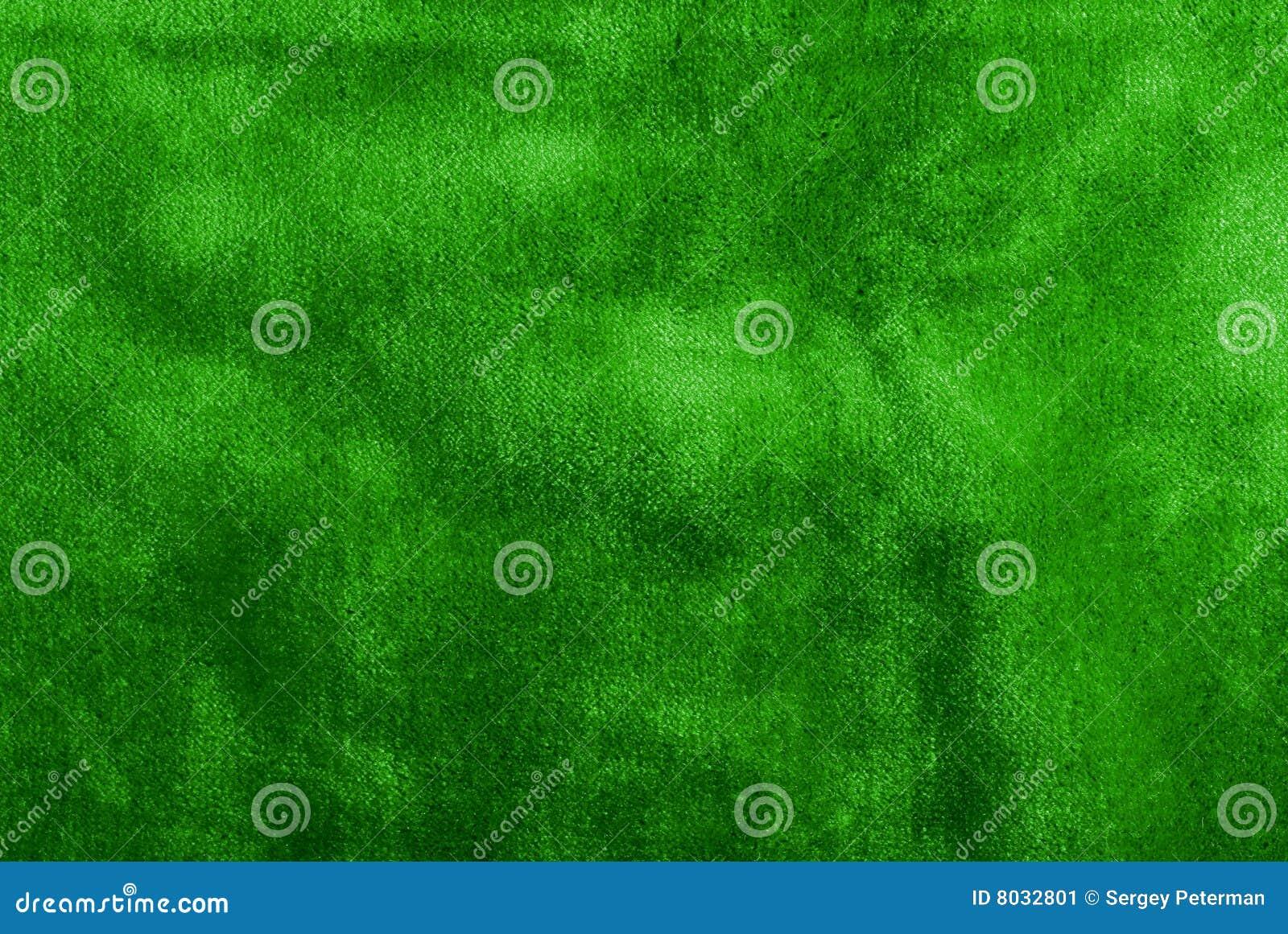 Grön Sammet Fotografering för Bildbyråer Bild 8032801
