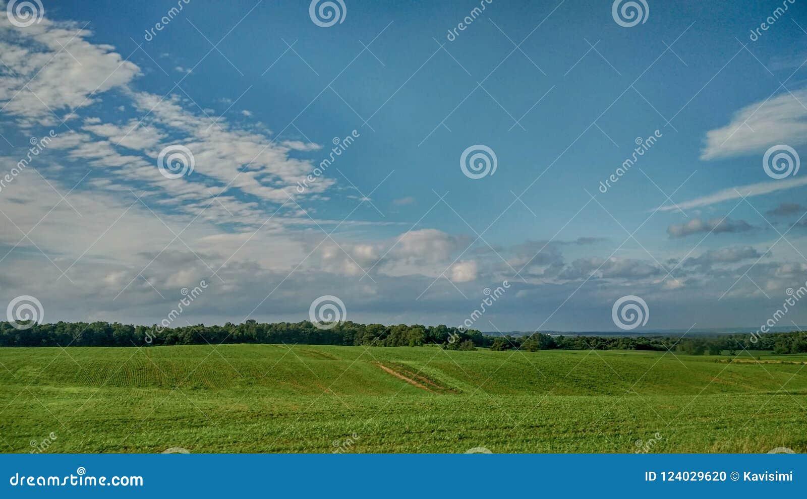 Grön sida för utvändigt land för fält