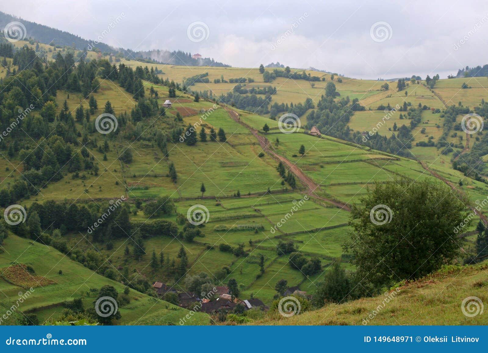 Gr?na berglutningar f?r sommar i Carpathiansna