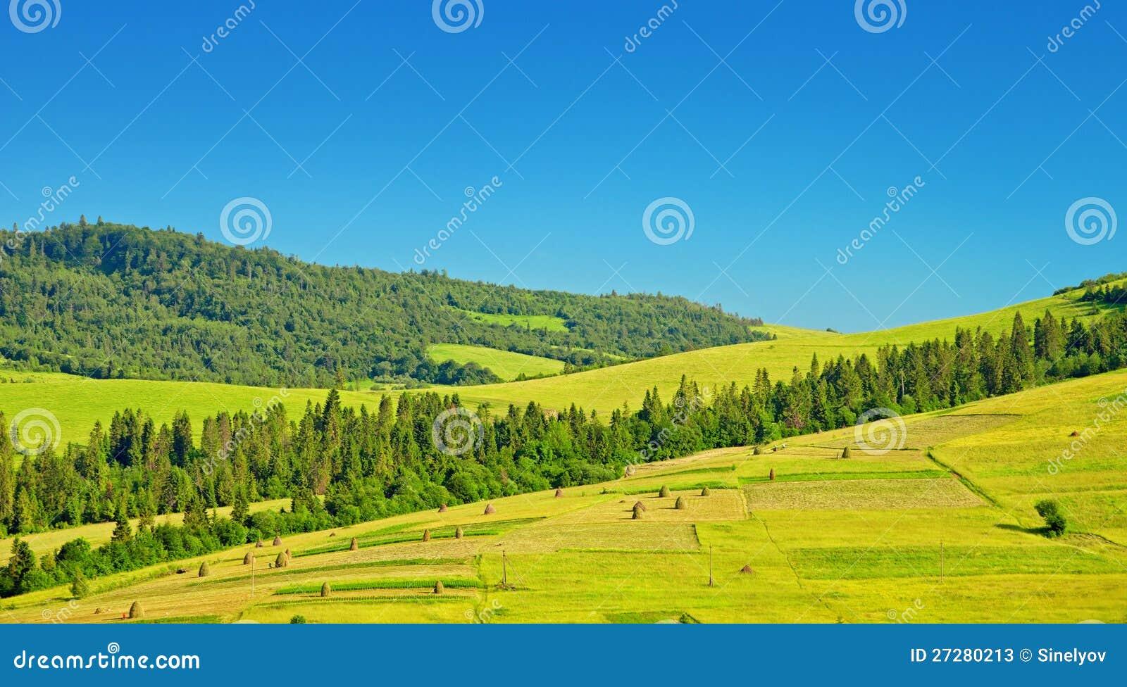 Gröna fält på kullar