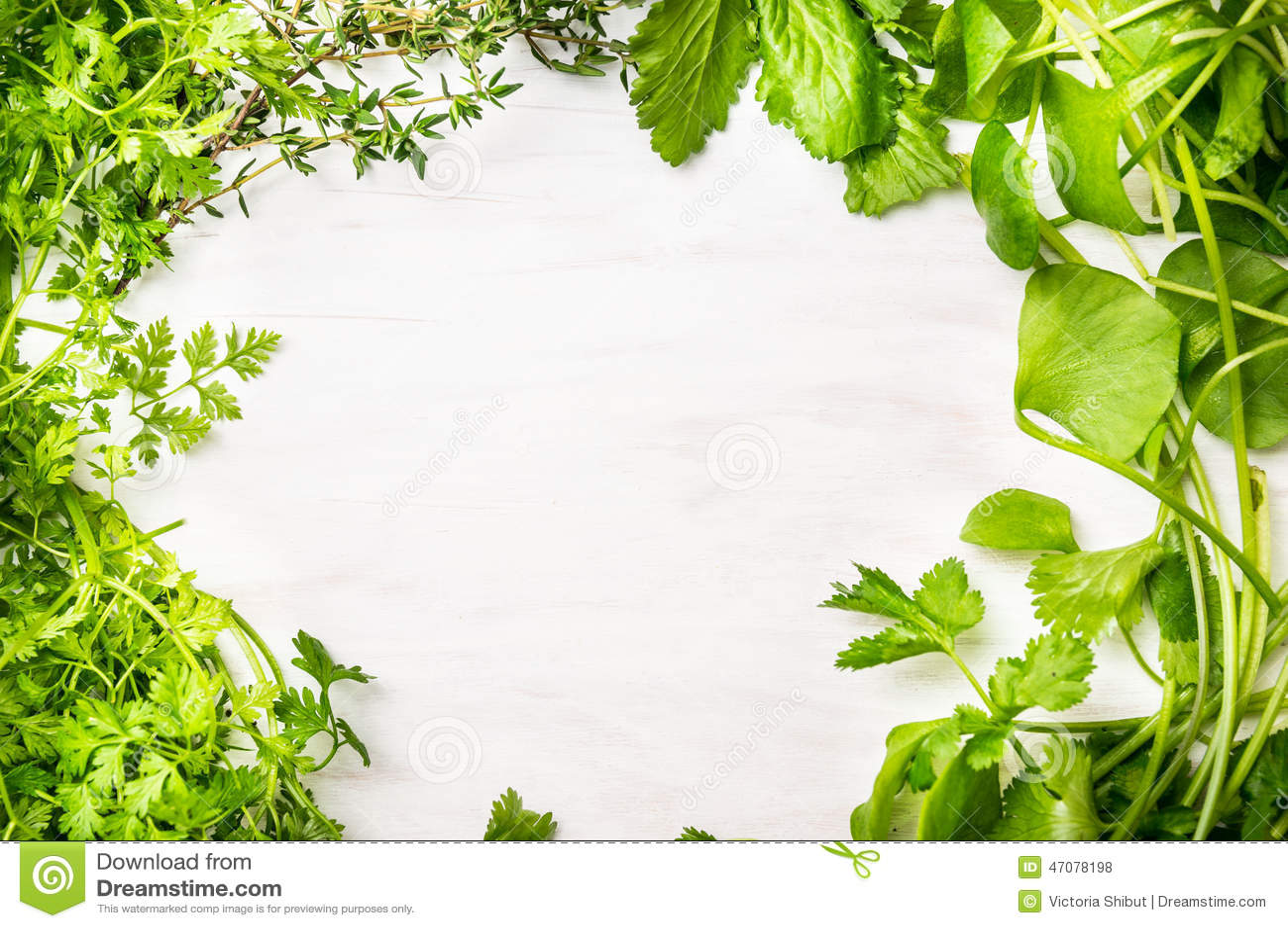 Gröna nya örter blandar på vit träbakgrund