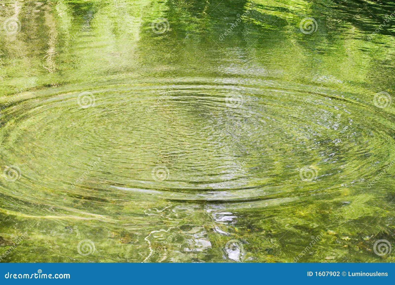 Grönt damm som utstrålar krusningar