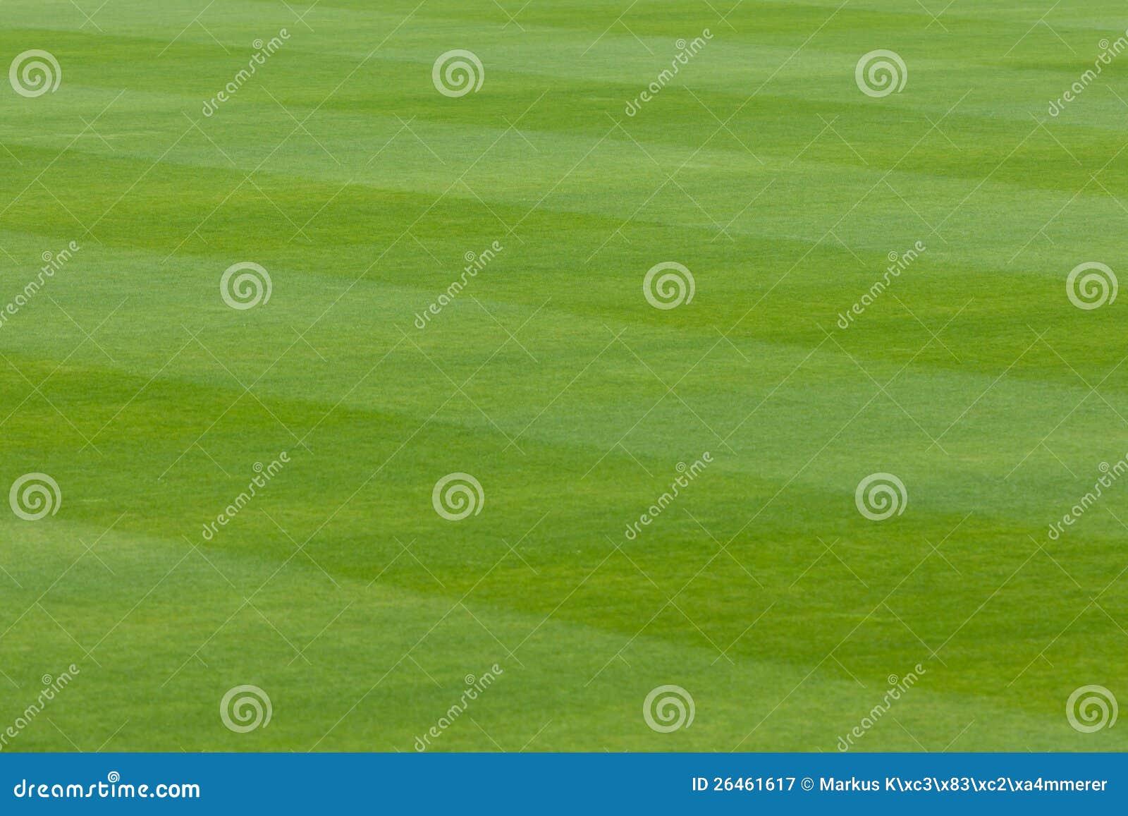 Grönt gräs i en stadion eller sportar field