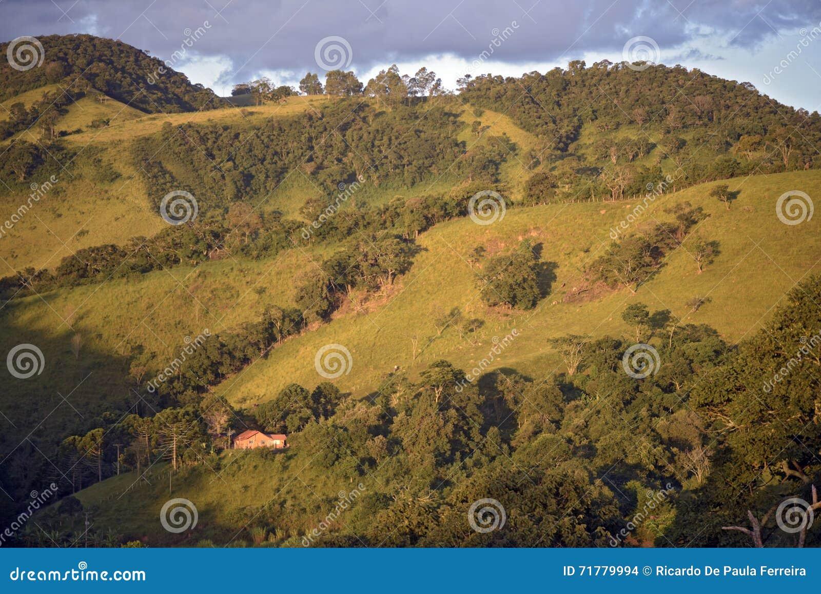 Grüne Hügel an der Dämmerung
