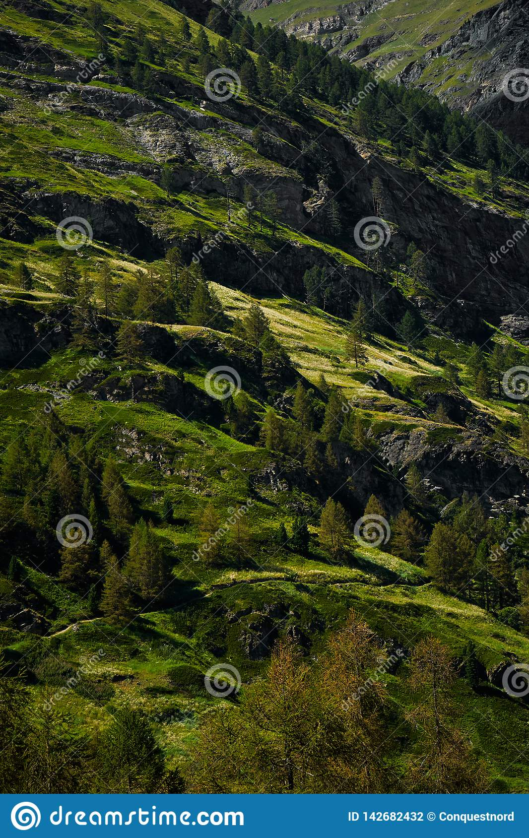 Grüne Hügel von der Schweiz im Sommer