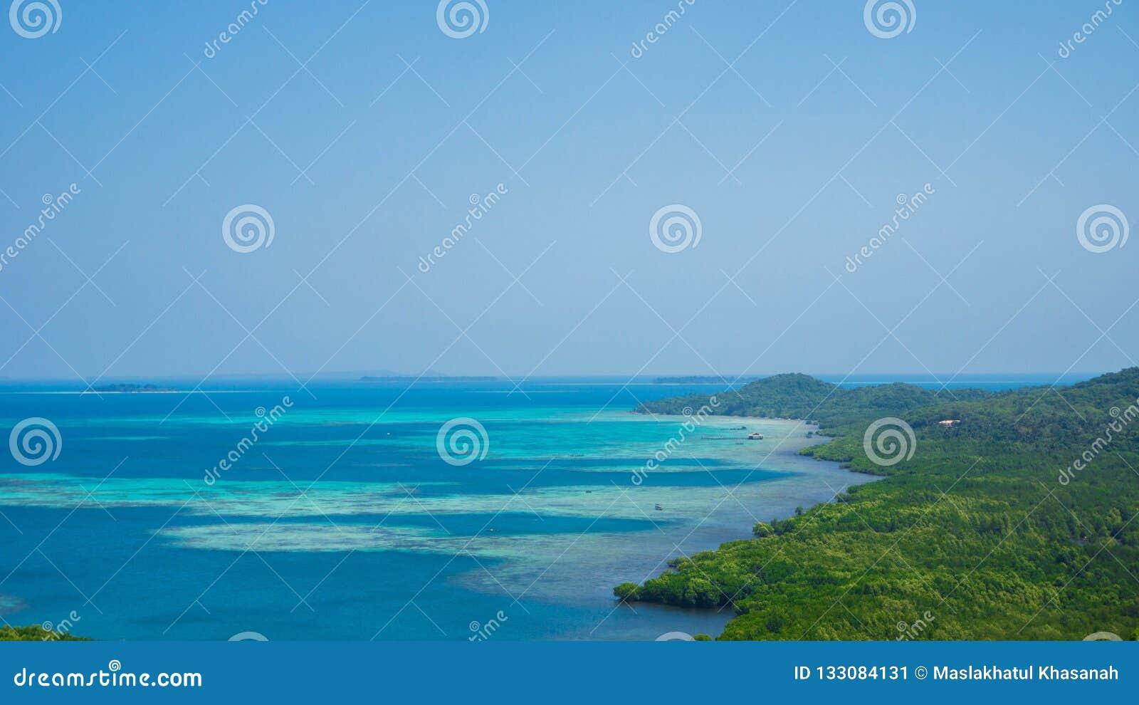 Grüne Türkishorizontküstenlinie der Insel und des Meeres des blauen Wassers mit klarem Himmel in karimun jawa