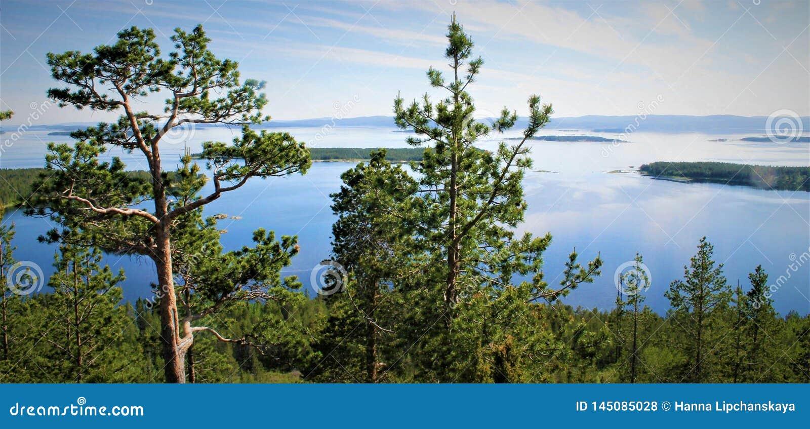 Grüne und blaue Ansicht des weißen Meeres