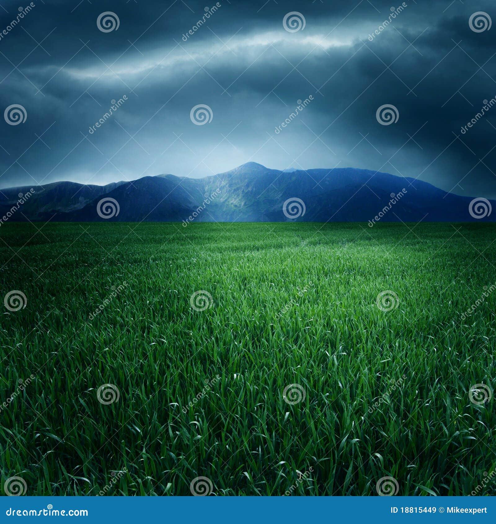 Grünen Sie Feld und Berge