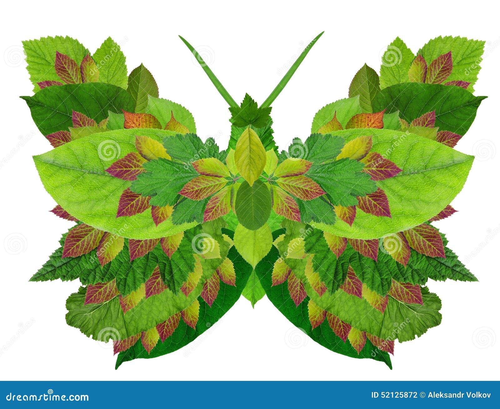 Grüner Bioschmetterling