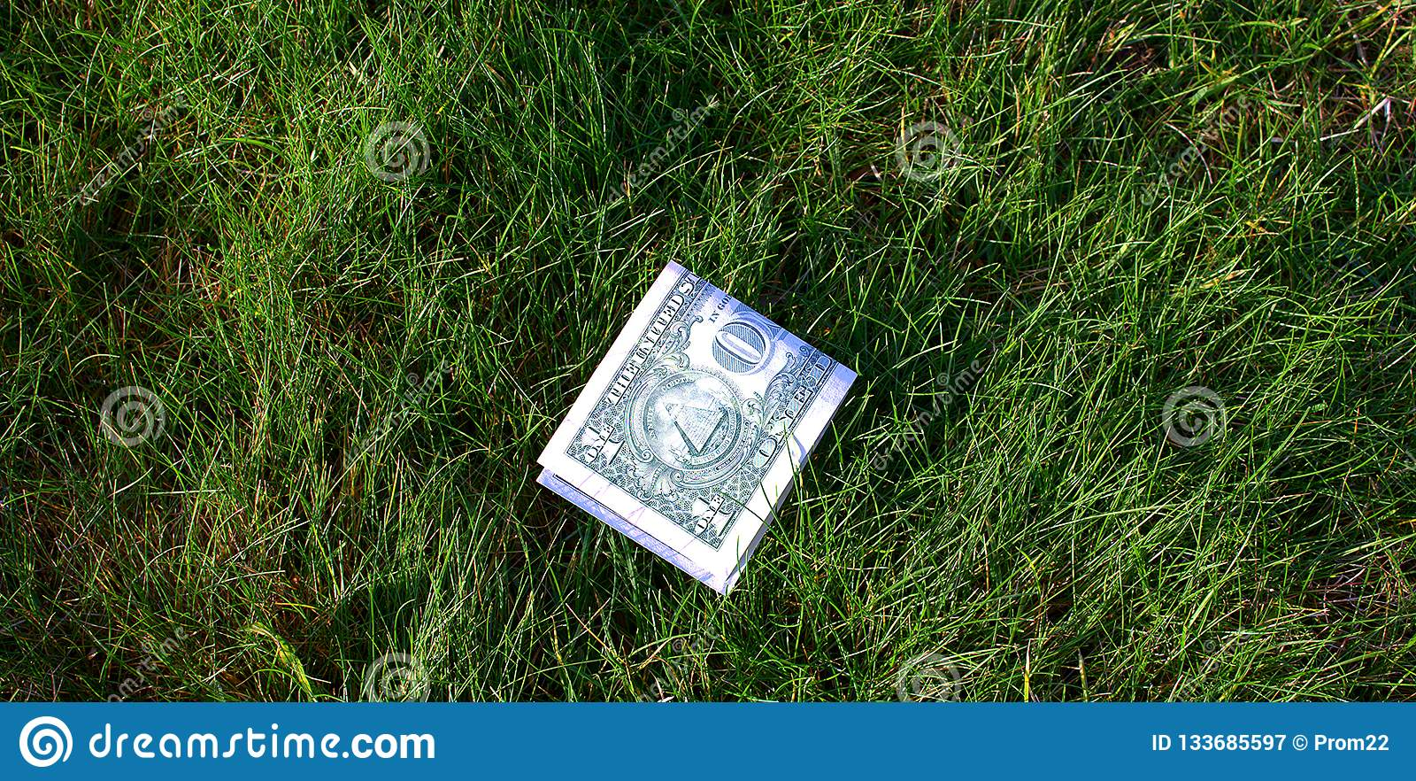Grüner Dollar gefaltet zur Hälfte auf grünem Gras