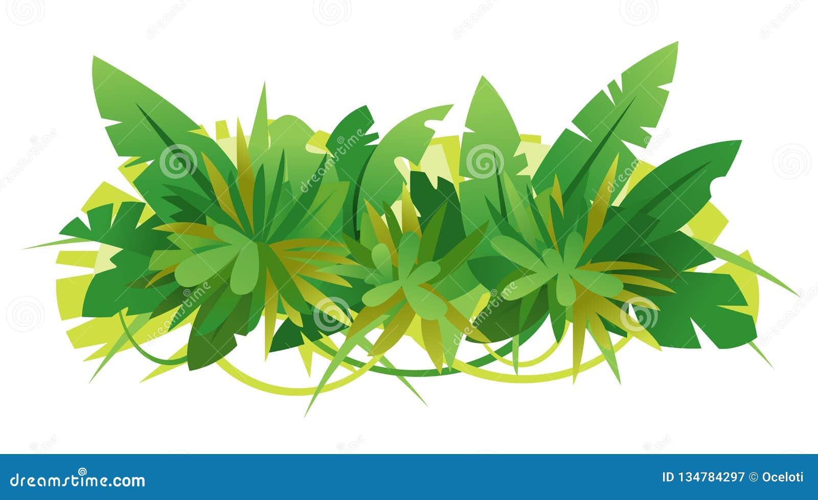 Grüner Dschungel verlässt Zusammensetzung