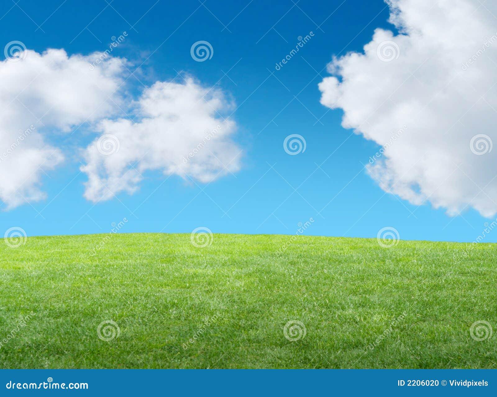 Grüner grasartiger Hügel