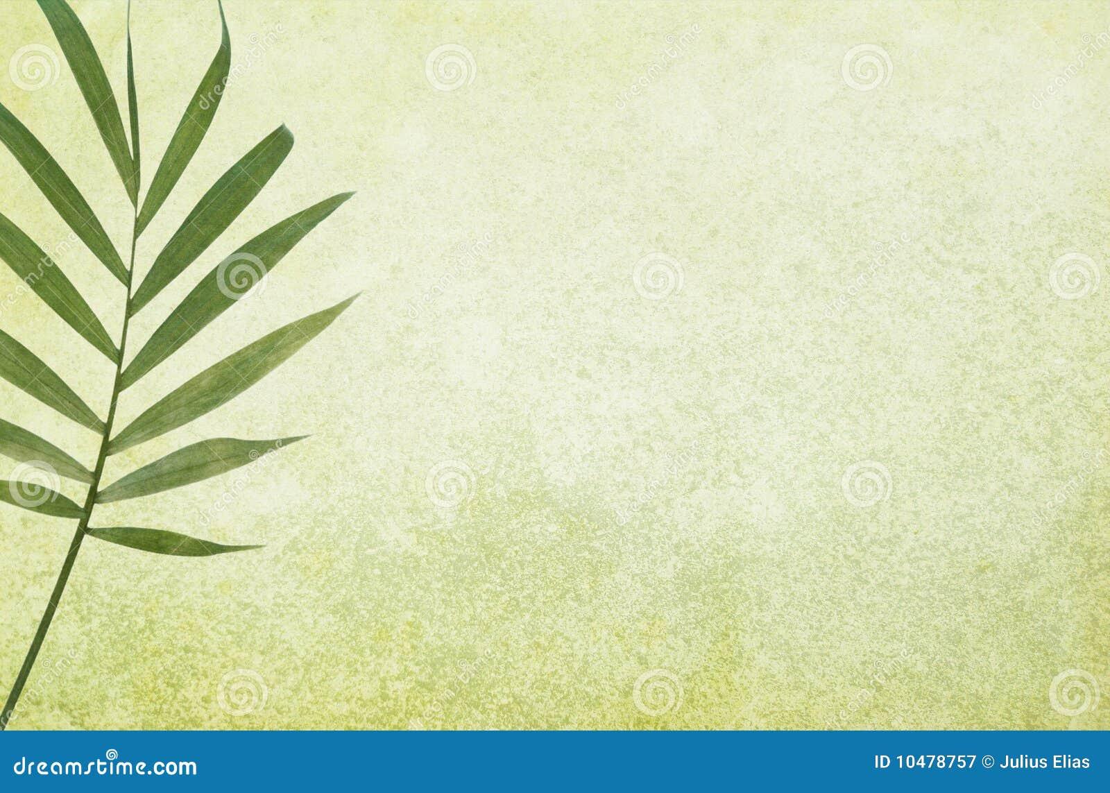 Grüner Grunge Hintergrund mit Palmblatt
