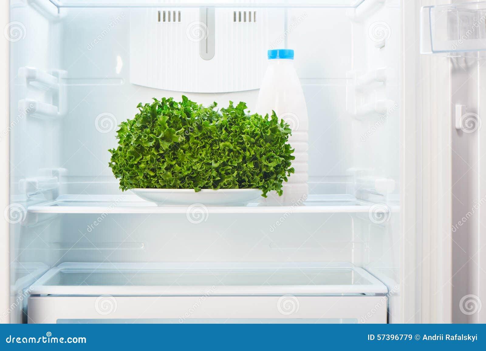 Kühlschrank Platte : Grüner salat auf weißer platte und einer glasflasche jogurt im