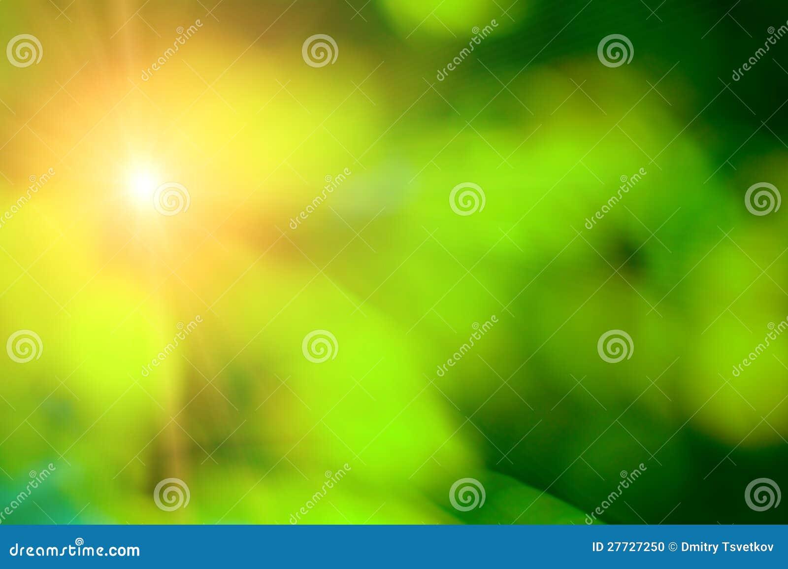 Grüner Sommer