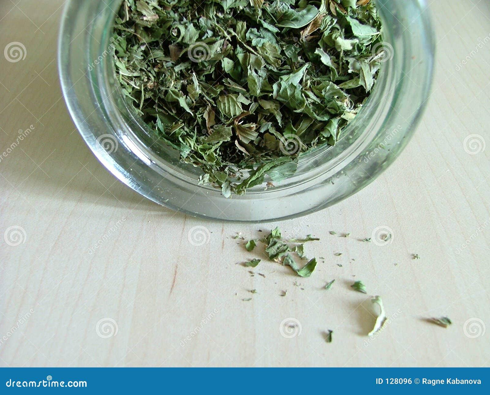 Grüner Tee in einem Glas
