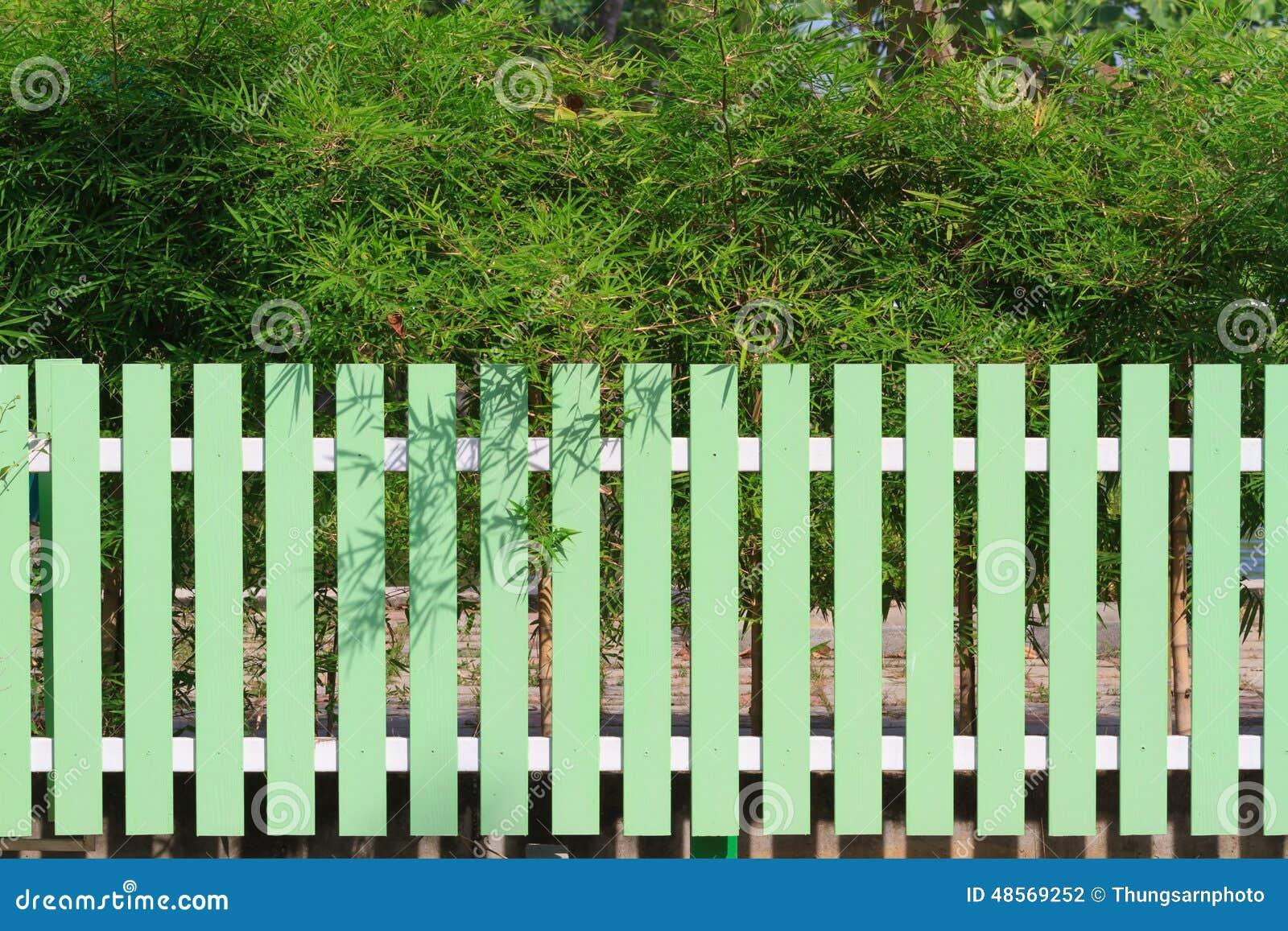 Grüner Zaun Und Bambusbaum Stockfoto Bild